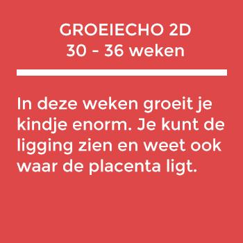 groeiecho-2d-2