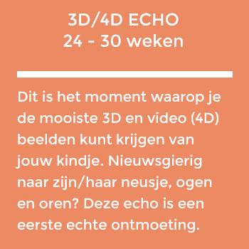 3d4d-echo